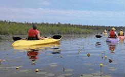 Kayak Tours In Door County Lakeshore Adventures