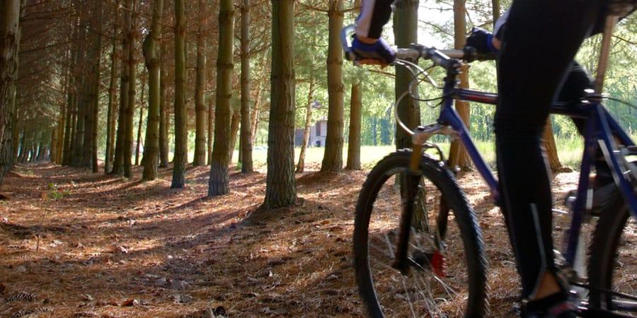 bike rentals door county wisconsin