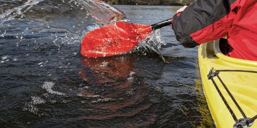 kayak rental splashing paddle